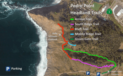 New Pedro Point Headlands Trail Map